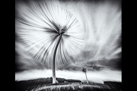 The Turbo Dandelion Wind Farm by Derek Snee